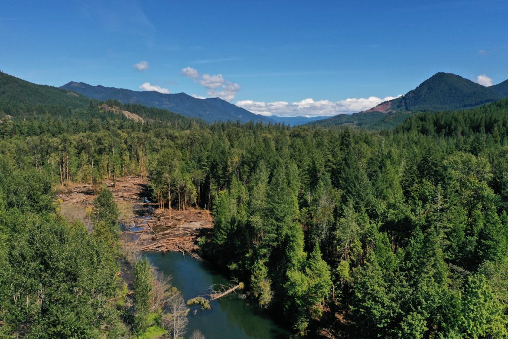 Oblique aerial image of South Fork McKenzie River from below Phase II project area