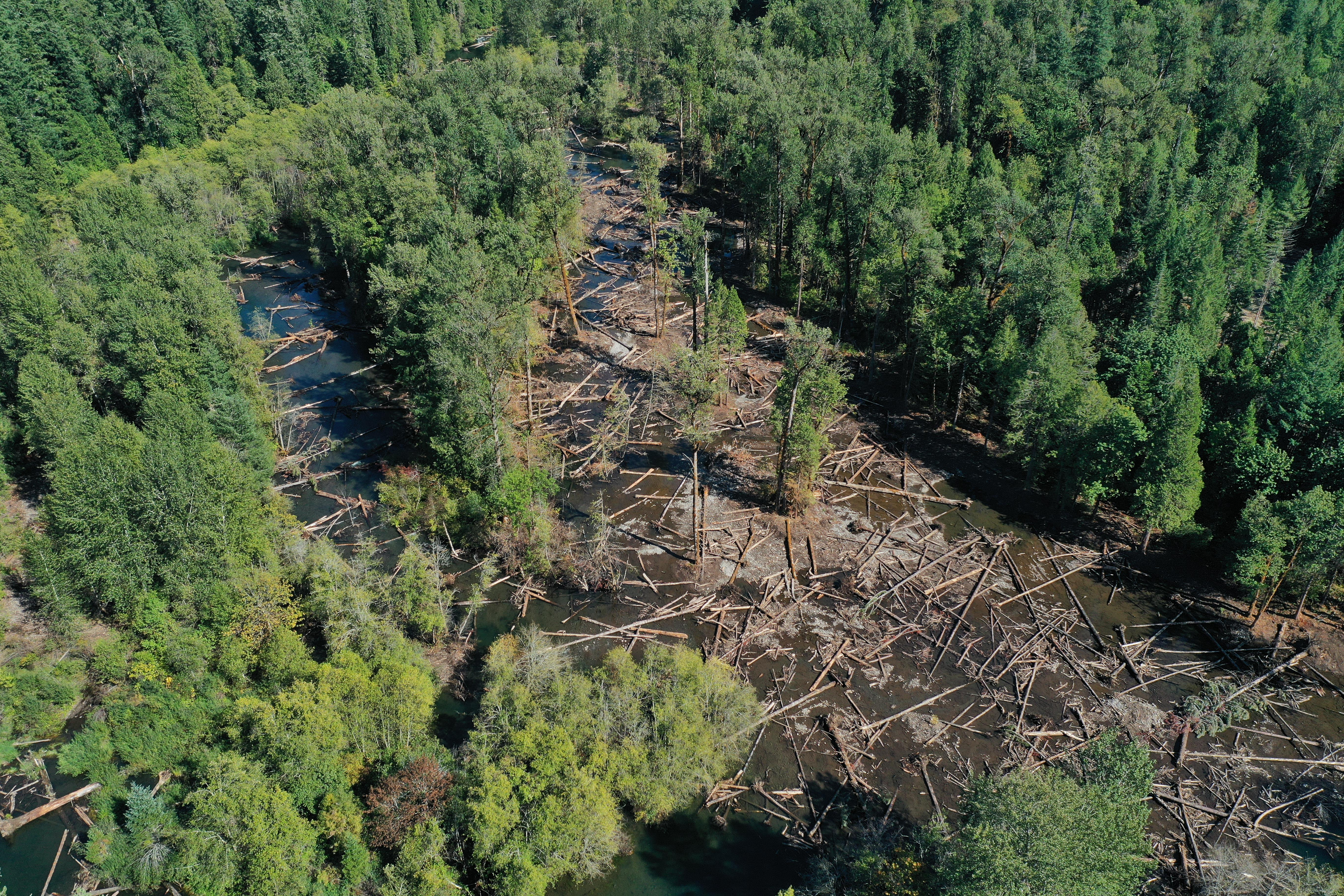 Oblique aerial view of large wood in watered South Fork McKenzie River following project completion