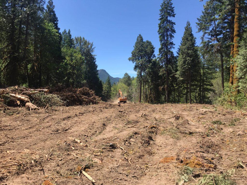 Excavator working alongside pile of wood in dewatered floodplain