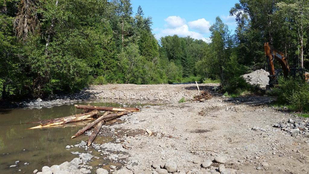 Cleared floodplain with pool of large wood